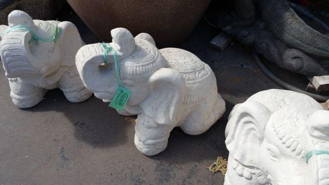 Elephant:Thai Elephant