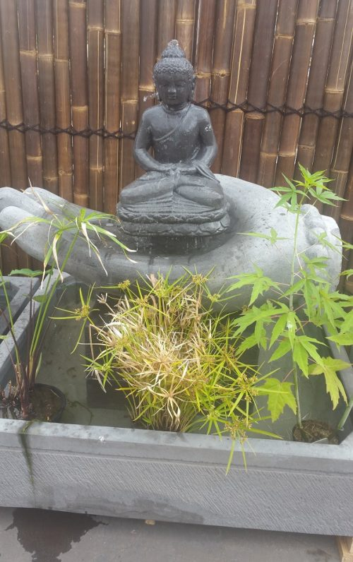 Buddha on Hand Water Feature