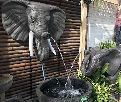 Elephant, turtles, frogs & more