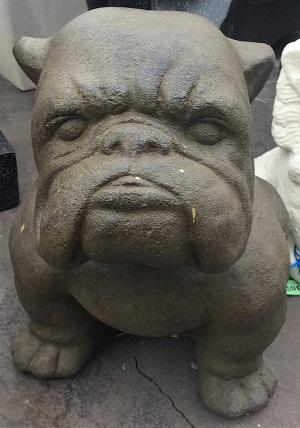 Dogs: Bulldog (Medium)
