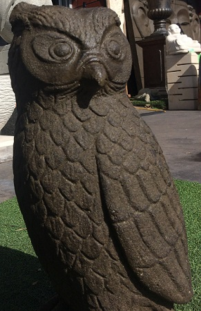 Birds: Owl (Small)