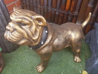 Dogs: Pitbull